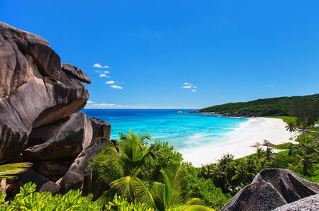 la digue: Aerial view of beautiful Grand Anse beach on La Digue island in Seychelles