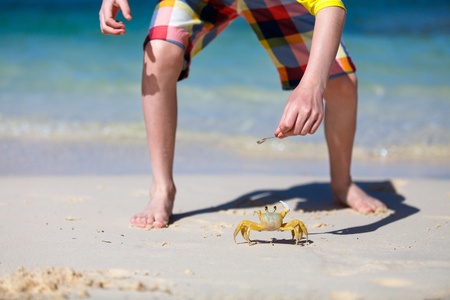 Boy trying to catch crab on white sand beach