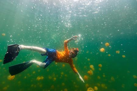 Fotografía submarina de buceo niño turística con medusas sin aguijón endémica en el lago en el Palau. Snorkeling en Jellyfish Lake es una actividad popular para los turistas a Palau.