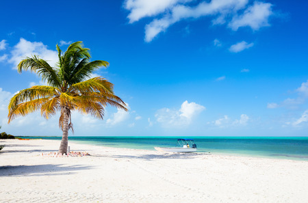 caribbean beach: Idyllic tropical beach on Barbuda island in Caribbean with white sand, turquoise ocean water and blue sky Stock Photo