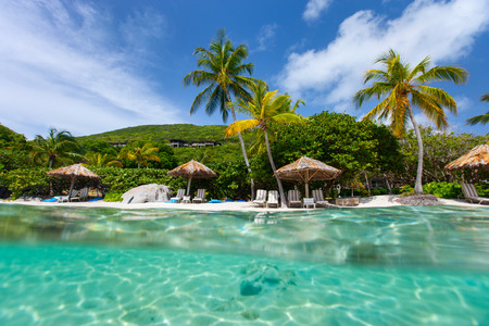 virgin islands: Beautiful tropical beach with palm trees, white sand, turquoise ocean water and blue sky at British Virgin Islands in Caribbean