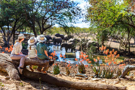Family of mother and kids on African vacation enjoying wildlife viewing at watering hole