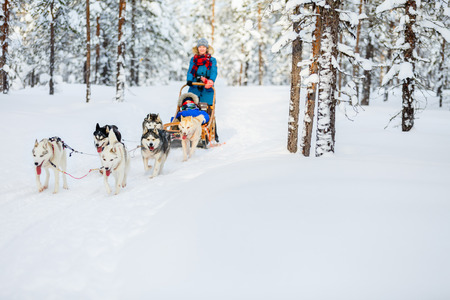 Husky Hunde ziehen Schlitten mit der Familie im Winterwald in Lappland Finnland
