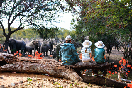 Family of father and kids on African safari vacation enjoying wildlife viewing at watering hole Imagens