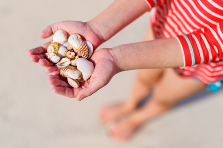 Close up of a little girl holding sea shells in her hands.
