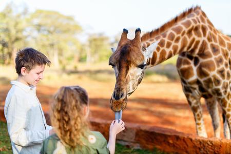 Jongensbroer en zus die giraffen in Afrika voeren