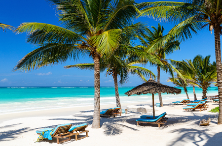Beach beds among palm trees at perfect tropical coast