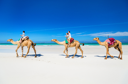 Family mother and kids riding camels at  tropical white sand beach Imagens
