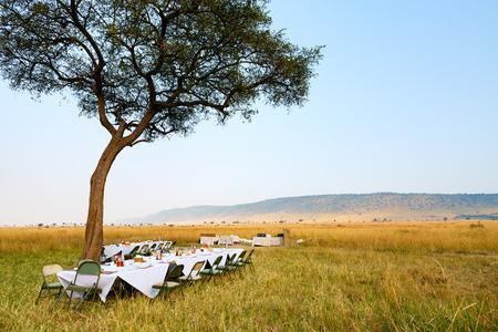 케냐의 마사이 마라 국립 공원의 고급 부시 아침 식사 스톡 콘텐츠