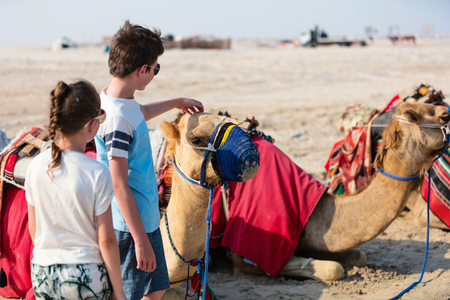 Kids brother and sister with camels at Qatar desert Stock Photo