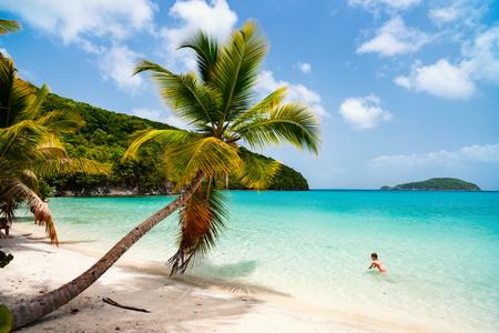 ヤシの木、白い砂浜、ターコイズ ブルーの海の水とカリブ海のセント ・ ジョン、米領バージン諸島の青い空と美しい熱帯のビーチ
