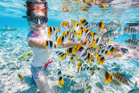 Woman snorkeling in clear tropical waters among colorful fish 스톡 콘텐츠