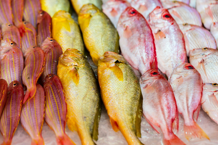 Fresh fish at seafood market in Hong Kong Stock Photo