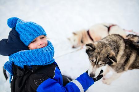 라플란드 핀란드에서 거친 썰매 개가있는 껴안고 사랑 스럽다 어린 소녀