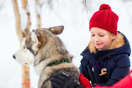 ラッピ州のハスキーそり犬と抱擁を持つ愛らしい少女