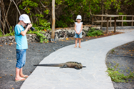 Little boy photographing huge marine iguana