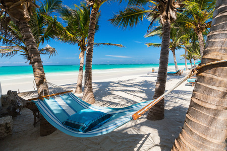 Perfect tropical beach with palm trees and hammock
