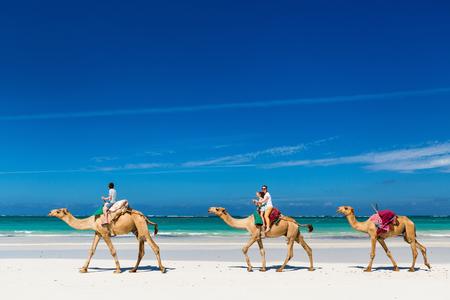 Familie Mutter und Kinder reiten Kamele am tropischen weißen Sandstrand Standard-Bild - 90338137