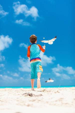 작은 소년과 카리브 해변에서 갈매기의 무리