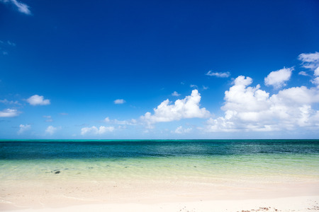 Idyllic tropical beach on Barbuda island in Caribbean with white sand, turquoise ocean water and blue sky Stock Photo