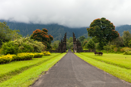 Panorama of a beautiful Bali landscape