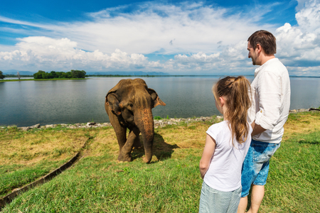Family of father and daughter watching elephant at Udawalawe National Park in Sri Lanka Stock Photo - 96078919