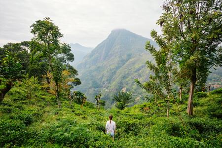 Young woman enjoying breathtaking views over mountains and tea plantations in Ella Sri Lanka