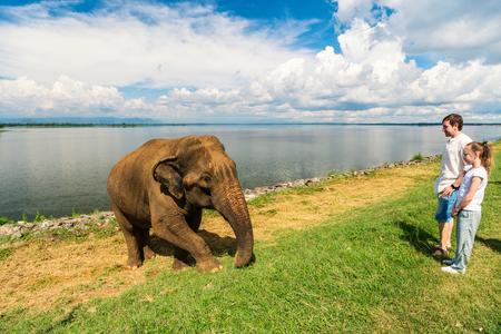 Familie von Vater und Tochter , die Elefanten am Nationalpark Plitvice in Sri Lanka aufpassen Standard-Bild - 96052272