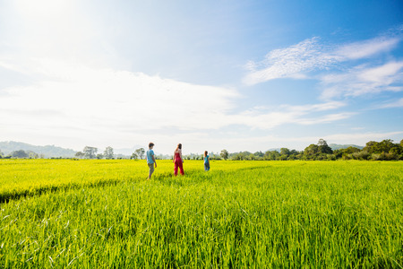 Family of mother and two kids enjoying peaceful walk in rice fields with breathtaking views over mountains in Sri Lanka Stok Fotoğraf - 95992869