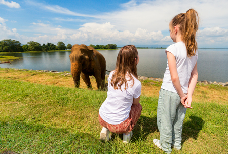 Family of mother and daughter watching elephant at Udawalawe National Park in Sri Lanka