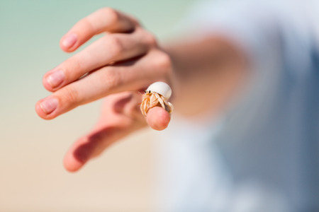 Close up of hermit crab on kid finger