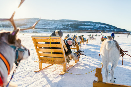 Teenage boy and his family sledding at reindeer safari on sunny winter day in Northern Norway Stok Fotoğraf