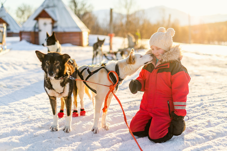 Adorable girl having a cuddle with husky sled dog in a farm in Northern Norway Standard-Bild