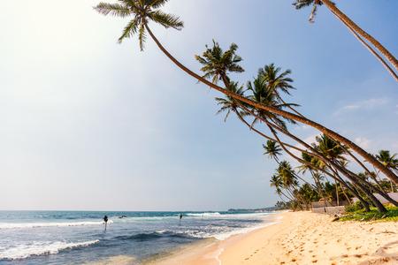 Landscape photo of exotic beach in Sri Lanka