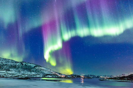 Incredible Northern lights Aurora Borealis activity above the coast in Norway Reklamní fotografie - 97960513