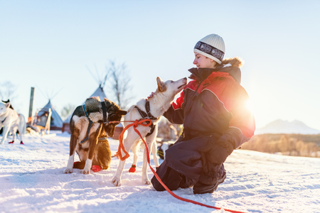 Teenage boy having a cuddle with husky sled dog in Northern Norway Stock Photo