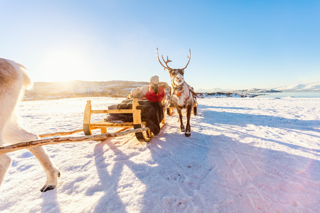 Family of mother and her daughter at reindeer safari on sunny winter day in Northern Norway