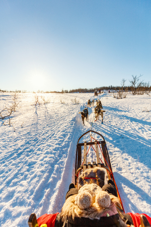 Husky dogs are pulling sledge with little girl on sunny winter day in Northern Norway Stock Photo