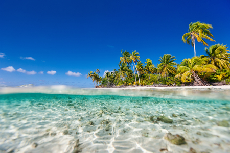 Beautiful tropical island at Tikehau atoll in French Polynesia