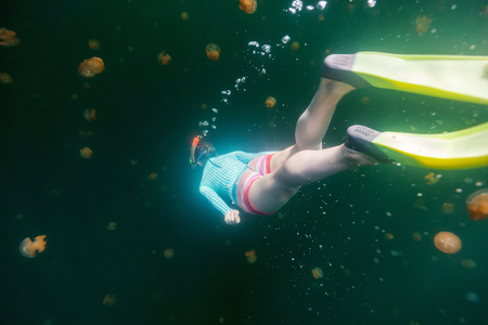 Underwater photo of tourist woman snorkeling with endemic golden jellyfish in lake at Palau.