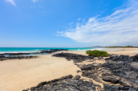 Beautiful beach on Galapagos Isabela island, Ecuador