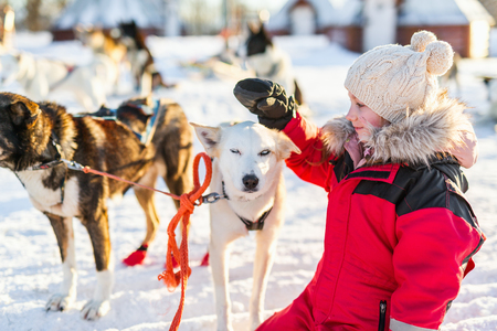 Adorable girl having a cuddle with husky sled dog in a farm in Northern Norway Stock Photo