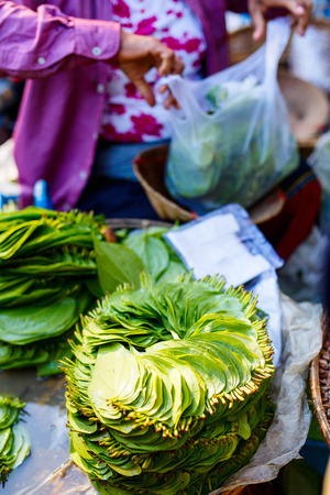A pile of betel nut leaves arranged in the usual circular patten at market in Bagan Imagens