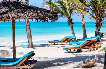 Beach beds among palm trees at perfect white sand tropical coast
