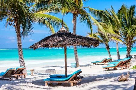 Lits de plage parmi les palmiers sur la côte tropicale de sable blanc parfait
