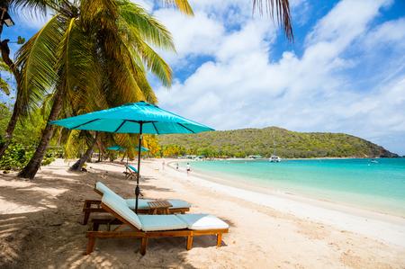 Idilliaca spiaggia tropicale con sabbia bianca, palme e acque turchesi del Mar dei Caraibi sull'isola di Mayreau a St Vincent e Grenadine Archivio Fotografico