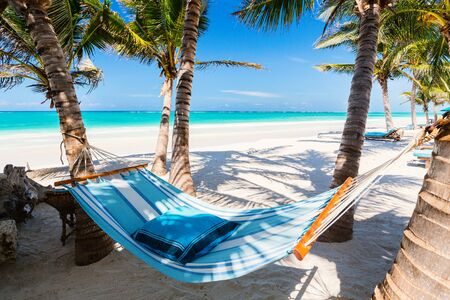Perfect tropical beach with palm trees and hammock in Kenya Africa Zdjęcie Seryjne