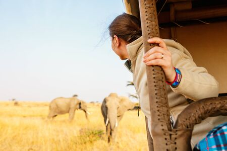 Woman on safari game drive enjoying close encounter with elephants in Kenya Africa
