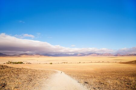 Beautiful landscape of Namib desert with Tiras mountains on background 写真素材