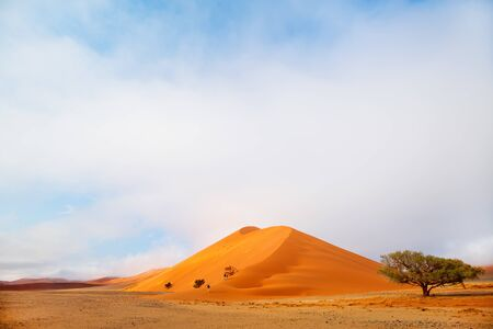 Beautiful red sand dunes in Sossusvlei in Namibia